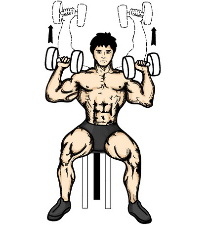 biceps-exercises-standing-one-arm-dumbbell-curls-over-incline-bench