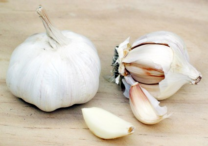 immune boosting garlic